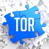 TOR on Blue Puzzle. — Stockfoto