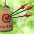 New Skills - Arrows Hit in Red Target. — Stock Photo #60160489