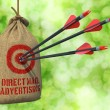 Direct Mail Advertising - Arrows Hit in Red Target. — Stock Photo #60166511