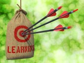 Learning - Arrows Hit in Red Target. — Stock Photo