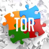 TOR on Variegated Puzzle. — Stock Photo