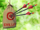 Civil Law - Arrows Hit in Red Target. — Stock Photo