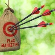 Plan Marketing - Arrows Hit in Red Target. — Stock Photo #68807145