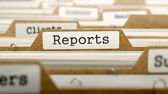 Reports Concept with Word on Folder. — Stock Photo