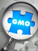 GMO - Missing Puzzle Piece through Magnifier. — Stock Photo