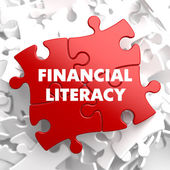 Financial Literacy on Red Puzzle. — Stockfoto