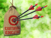 Continuing Education - Arrows Hit in Red Target. — Stock Photo