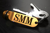SMM Concept. Keys with Golden Keyring. — Φωτογραφία Αρχείου