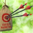 Content Marketing - Arrows Hit in Red Target. — Stock Photo #74702669