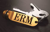 ERM - Bunch of Keys with Text on Golden Keychain. — Stock Photo