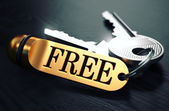 Keys with Word Free on Golden Label. — Stock Photo