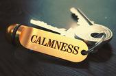 Calmness Concept. Keys with Golden Keyring. — Stock Photo