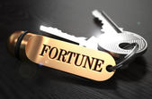 Keys to Fortune. Concept on Golden Keychain. — Stock Photo