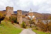 Ananuri Fortress — Stock Photo