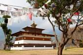 Chimi Lhakhang Temple — Foto de Stock