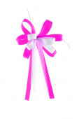 Bow pink  ribbon — Stockfoto