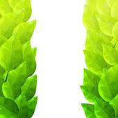 Yeşil yaprakları çerçeve. Suluboya sanatsal doku. — Stok Vektör