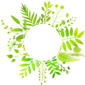 Summer round frame with bright green leaves. — Stock Vector