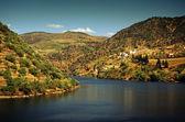 Douro Landscape — Stock Photo