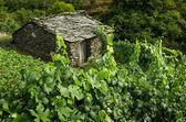 Portuguese remote countryside landscape — Stock Photo