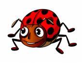 Funny ladybug — Stock Vector