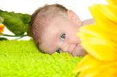 A few months baby with big blue eyes — Stock Photo