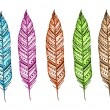 Decorative hand drawn bright feathers — Stock Photo #61613761