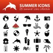 Summer icons — Stock Vector #60273685