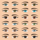 Eyes collection — Stock Vector