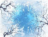 Winter branches — Stock Vector