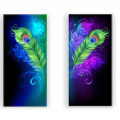 Two banners with peacock feathers — Stock Vector #73421467