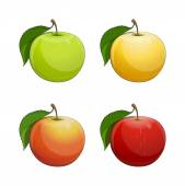 Ripe apple with green leaf — Stock Vector