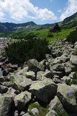 The Tatra Mountains, Poland — Stock Photo