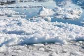 Arctic landscape in Greenland — Stock Photo