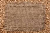 Frame of burlap  lying on a wheat  background — Stock Photo