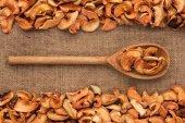 Drewnianą łyżką z suszonych jabłek leży na worze — Zdjęcie stockowe