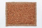 Frame of burlap and  buckwheat  grain — Stock Photo