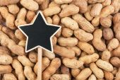 Pointer, the sign lies on peanut — Stock Photo