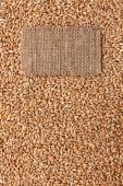 Tag made of burlap lies against the backdrop of wheat — Foto de Stock