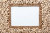 Frame made of burlap with the line and sunflower seeds lies whit — Stock Photo