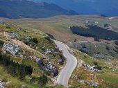 Route de montagne — Photo