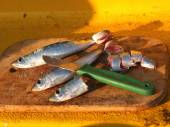 Fishing bait — Stock Photo