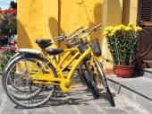 Yelow bike and flower — Stockfoto