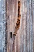 Struttura di legno marrone — Foto Stock
