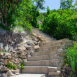 Stone stairs landscaping — Stock Photo #79469302