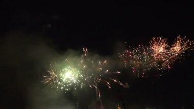 Spectators Fireworks — Stock Video