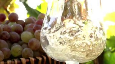 Sparkling Wine is poured into a glass — Stock Video