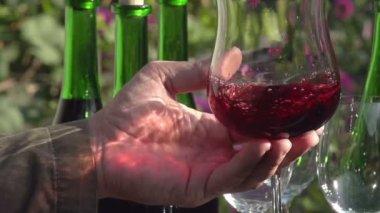 Sommelier Wine Tasting. — Stock Video