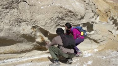 Two paleontologists — Stock Video
