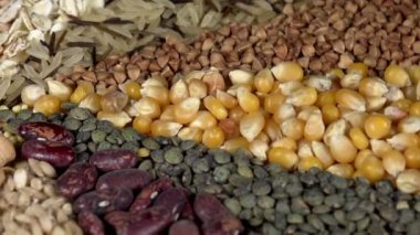 Variety of cereals and legumes — Stock Video